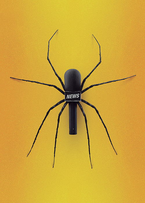 Coco Cerrella (AR) - Spider